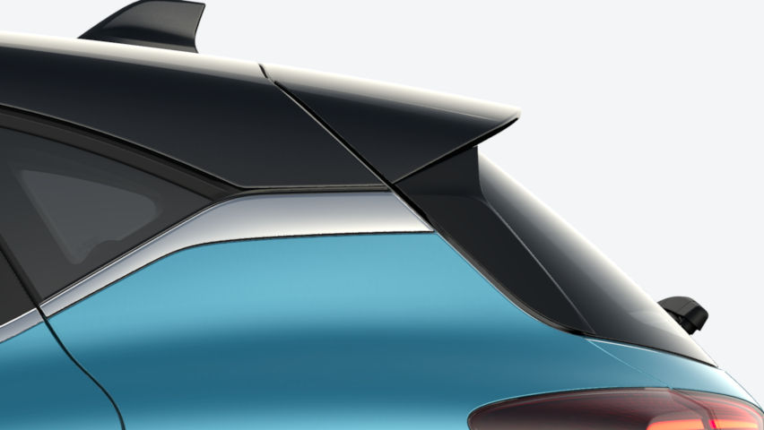 Bleu Celadon / toit Noir Etoilé